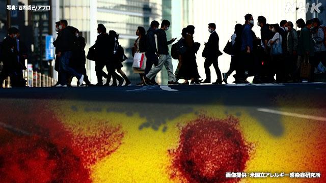 緊急事態宣言の11都府県 感染状況「6つの指標」は