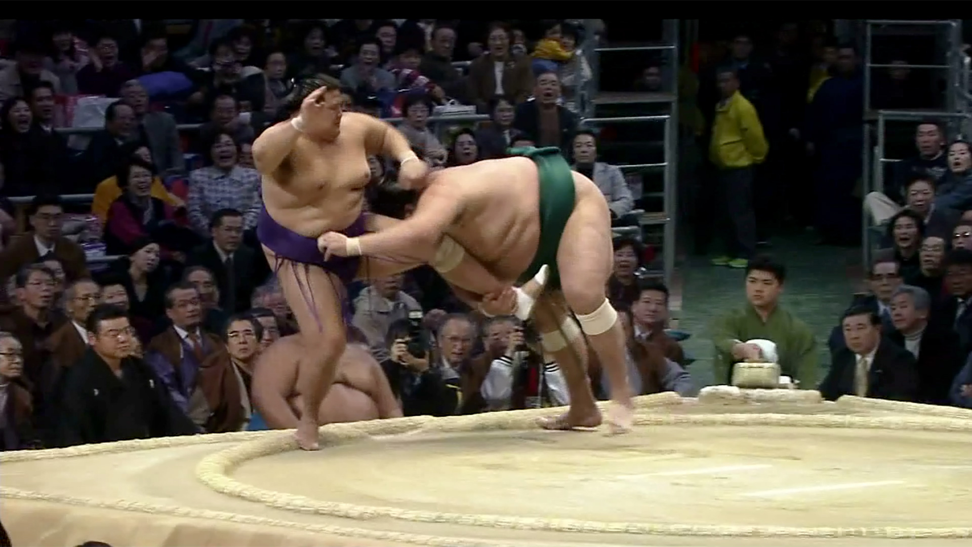 Tsumatori/ Rear ankle pick
