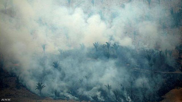 アマゾンで続く火事を消すために日本などが協力する