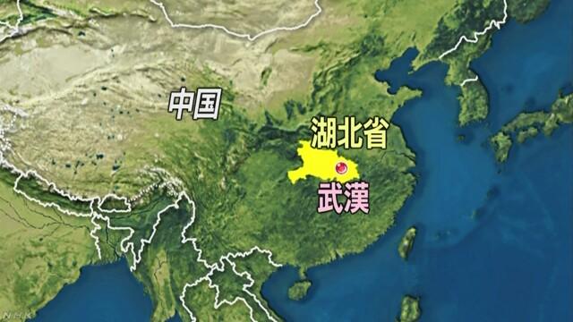 ウイルス な 中国 新た