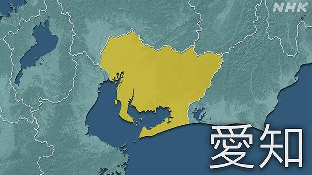 愛知県 新型コロナ 新たに102人感染確認 県内延べ3244人に | NHKニュース