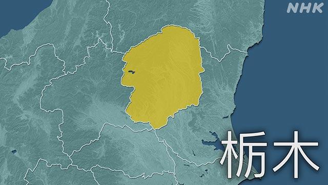 栃木県 新型コロナ 新たに3人感染確認 県内計249人に | NHKニュース