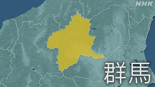 群馬県 新型コロナ 新たに8人の感染確認 県内計234人に | NHKニュース