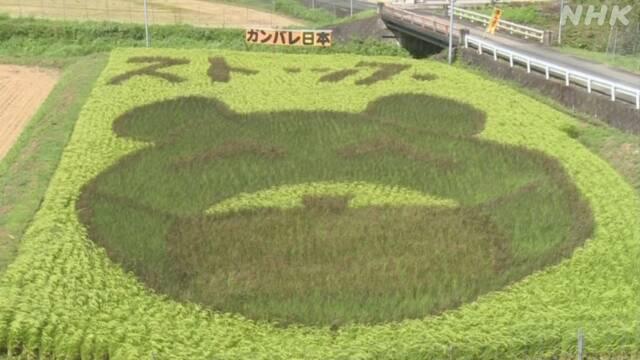 福知山 コロナ 感染
