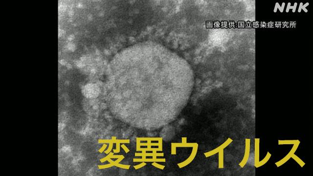 新型 コロナ ウイルス nhk