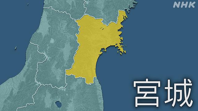 仙台 市 ウイルス コロナ