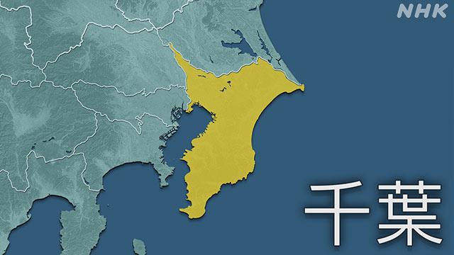 千葉県 新型コロナ 5人死亡 162人感染確認 変異ウイルス47人   新型 ...