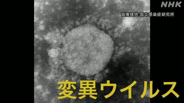 """東京都内 """"N501Y""""変異ウイルス 検査対象の77%が感染"""