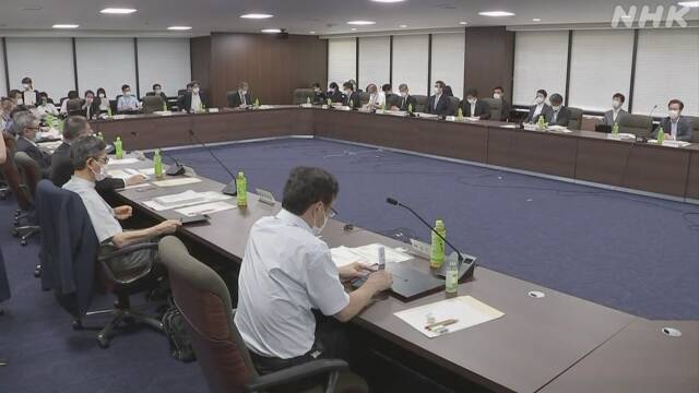 厚労省の専門家会合 宣言効果や変異ウイルスなどを分析