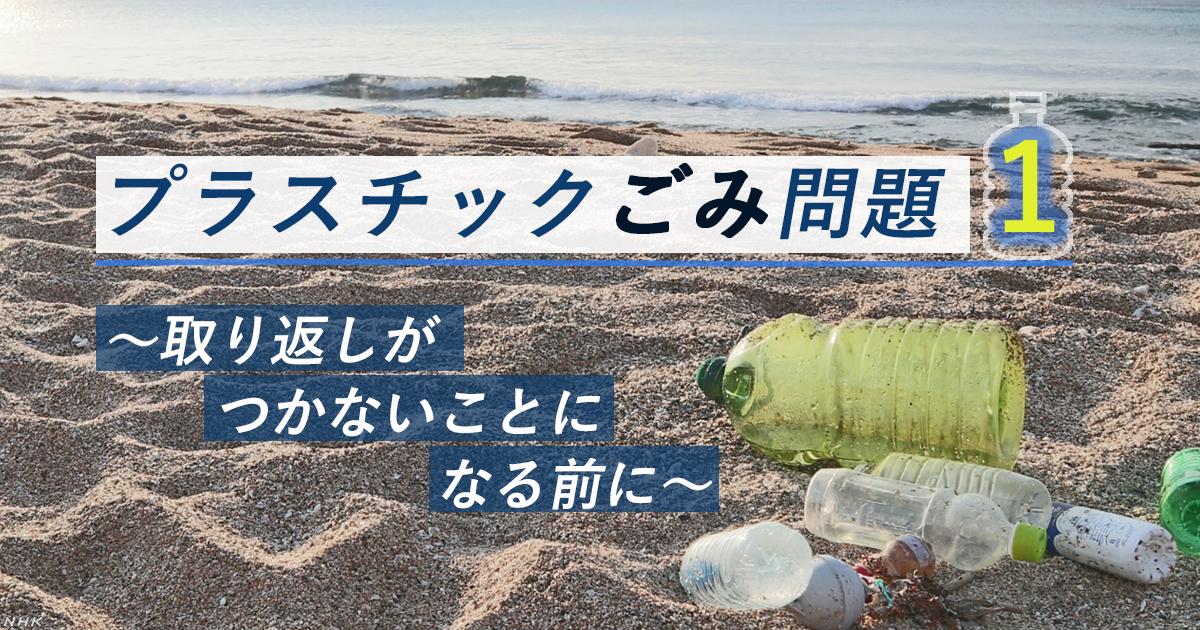 ゴミ 英語 プラスチック
