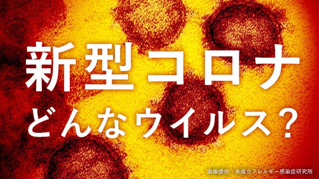 県 コロナ 速報 twitter 山口 山口県/政策企画課/新型コロナウイルス感染症関連情報・感染に関する情報