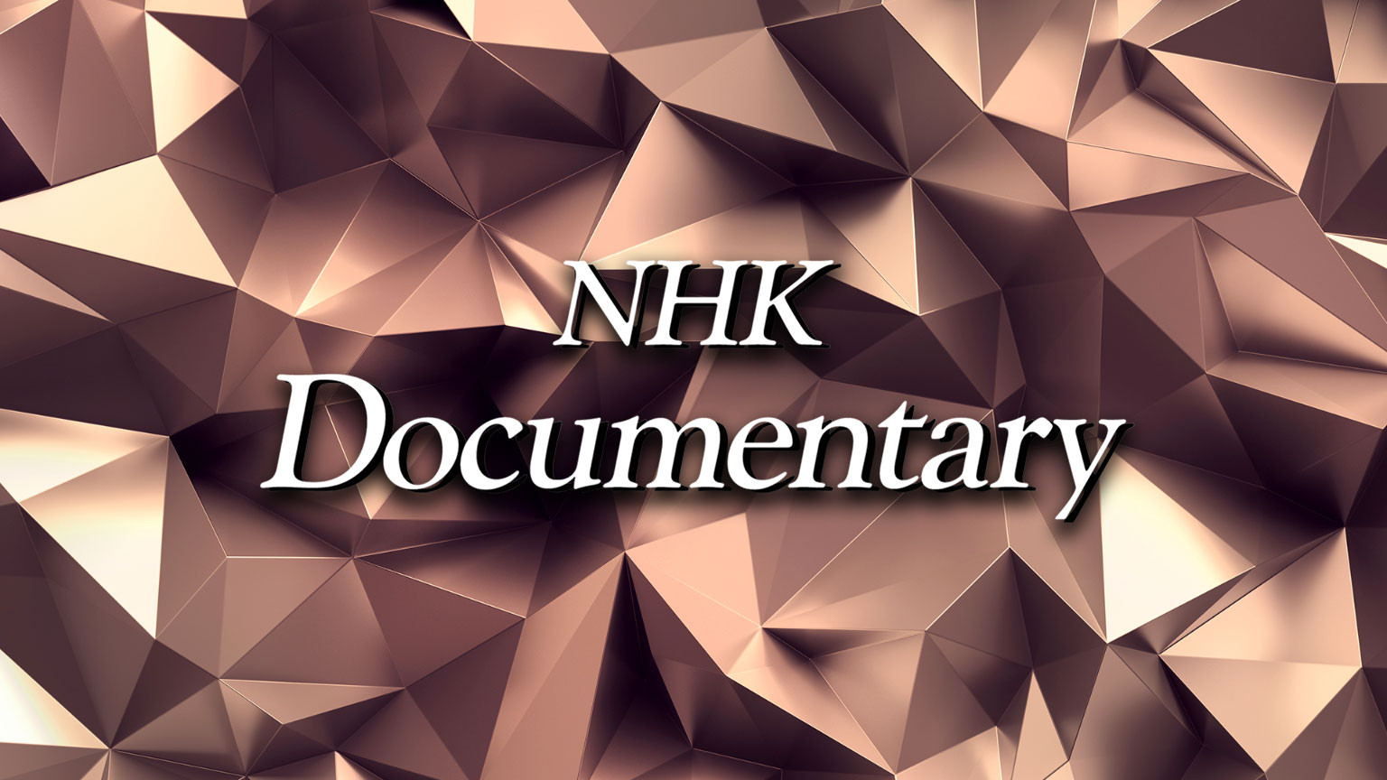 NHK特別節目