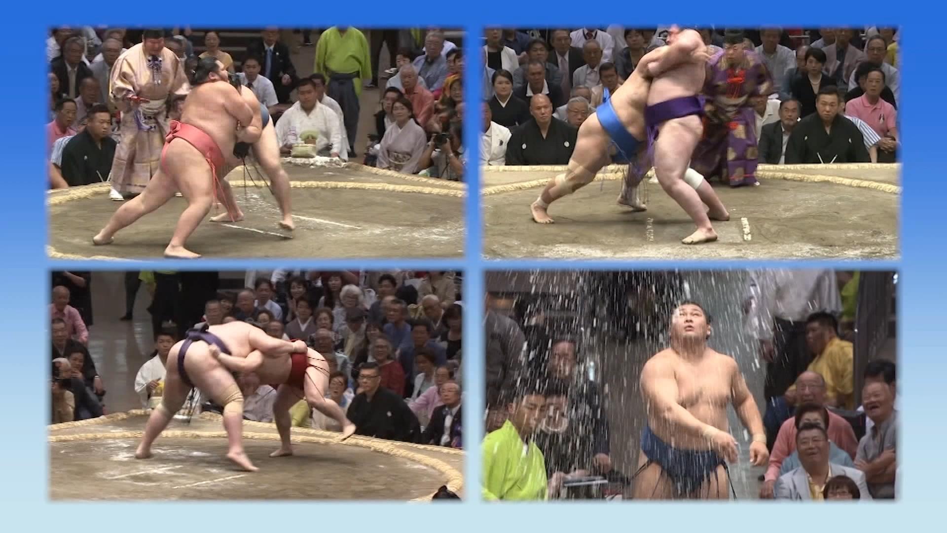 大相撲取組動画の楽しみ方