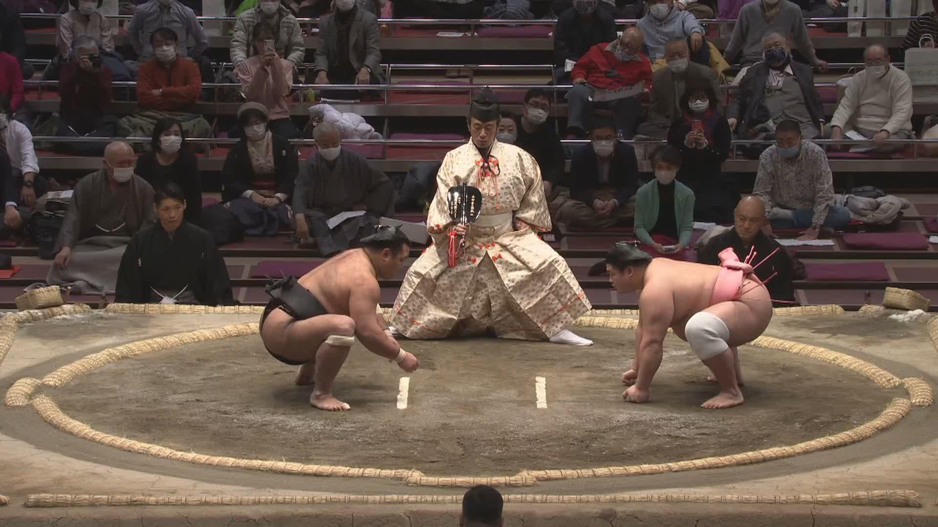 相撲 結果 の 山 の 今日 の 朝